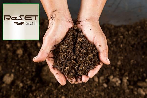 Reset Soil